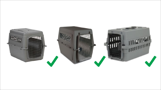 Preparing Your Pet For Travel Crate Requirements