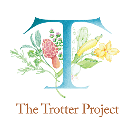 The Trotter Project